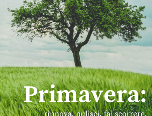 PRIMAVERA: RINNOVA, PULISCI E FAI SCORRERE.